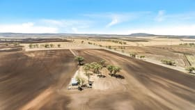 Rural / Farming commercial property for sale at Lot 32 Felton Clifton Road Felton QLD 4358