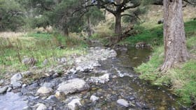 """Rural / Farming commercial property for sale at """"Silver Springs"""" Danglemah Road Woolbrook NSW 2354"""