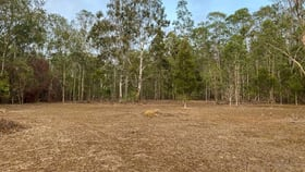 Rural / Farming commercial property for sale at 249 Cedar Party Road Taree NSW 2430