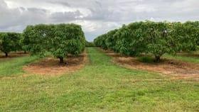 Rural / Farming commercial property for sale at Schincariol Road Dimbulah QLD 4872