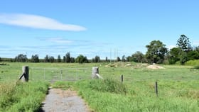 Rural / Farming commercial property for sale at 523 Cabbage Tree Road Williamtown NSW 2318