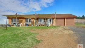 Rural / Farming commercial property for sale at 80 Binjura Road Cooma NSW 2630
