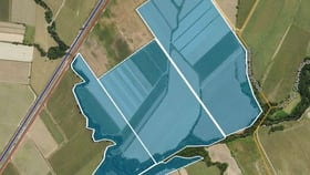 Rural / Farming commercial property for sale at 1 Brodrick Rd & Bruce Highway Birkalla QLD 4854