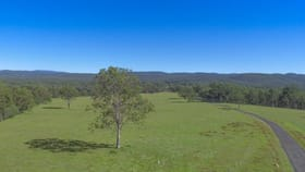 Rural / Farming commercial property for sale at Lot 280 Paddy Flat Road Tabulam NSW 2469