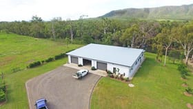 Rural / Farming commercial property for sale at 1/ Oaky Valley Avenue Mutchilba QLD 4872