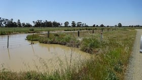 Rural / Farming commercial property for sale at Lot 1 Murray Valley Highway Echuca VIC 3564