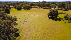 Rural / Farming commercial property for sale at 40 Daley Road West Pinjarra WA 6208