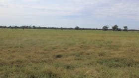 "Rural / Farming commercial property for sale at "" Amaroo Drive Blocks"" Moree NSW 2400"
