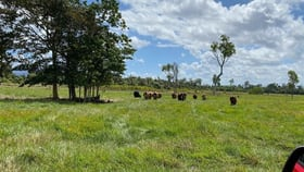 Rural / Farming commercial property for sale at Ellerbeck QLD 4816