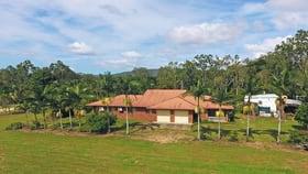 Rural / Farming commercial property for sale at 243 Kanervo Road Koah QLD 4881