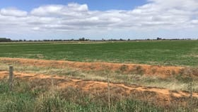 Rural / Farming commercial property for sale at Lot 1 & 3/2077 Fenaughty Road Kyabram South VIC 3620