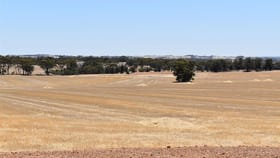 Rural / Farming commercial property for sale at Lot 2182 Warren Road Katanning WA 6317
