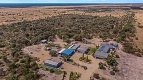 Rural / Farming commercial property for sale at 217 Reo Road Couch Beach SA 5577