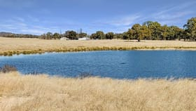 Rural / Farming commercial property for sale at 2826 Kingstown Road Kingstown NSW 2358