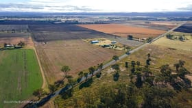 Rural / Farming commercial property for sale at 1406 Dalrymple Creek Rd Talgai QLD 4362