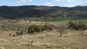 Rural / Farming commercial property for sale at 2661 The Bridle Track Bruinbun NSW 2795