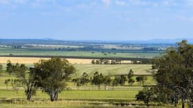 Rural / Farming commercial property for sale at 132 Wright Road Mount Tabor QLD 4370