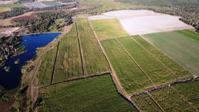 Rural / Farming commercial property for sale at 407 Dahls Road Calavos QLD 4670