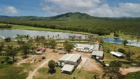Rural / Farming commercial property for sale at 4684 Mulligan Highway Lakeland QLD 4871