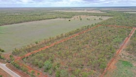 Rural / Farming commercial property for sale at 155 Napier Rd Katherine NT 0850