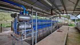 Rural / Farming commercial property for sale at 62 Bridport Back Road Nabowla TAS 7260
