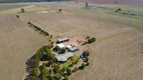 """Rural / Farming commercial property for sale at 893 """" Wheogo"""" Deaths Lane Grenfell NSW 2810"""