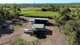 Rural / Farming commercial property for sale at Lot 472 Surprise Creek Road Mount Ossa QLD 4741