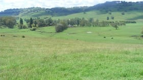 Rural / Farming commercial property for sale at BonnieDoon/66 Homestead Road Glencoe NSW 2365