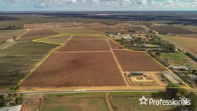 Rural / Farming commercial property for sale at 150 Ropers Road Cardross VIC 3496