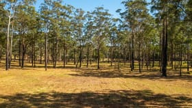Rural / Farming commercial property for sale at 555 Fernbank Creek  Road Port Macquarie NSW 2444