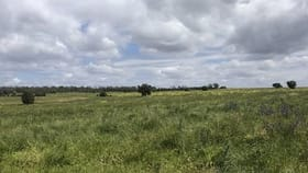 Rural / Farming commercial property for sale at - 1016 NYNGAN RD Condobolin NSW 2877