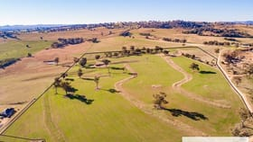 Rural / Farming commercial property for sale at 855B Darbys Falls Road Cowra NSW 2794