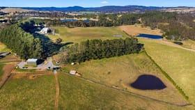 Rural / Farming commercial property for sale at 581 Greenhills Road Berrima NSW 2577
