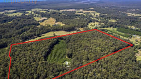 Rural / Farming commercial property for sale at 149 Browns  Road Yarrahapinni NSW 2441