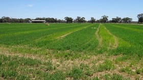 Rural / Farming commercial property for sale at . Gamble Road Torrumbarry VIC 3562