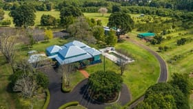 Rural / Farming commercial property for sale at 482 Ellis Road Rous NSW 2477
