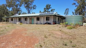 Rural / Farming commercial property for sale at 893 Coaldale Road Fortis Creek NSW 2460