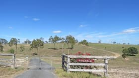 Rural / Farming commercial property for sale at 860 Railway Road Booyal QLD 4671
