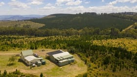 Rural / Farming commercial property for sale at 294 Black Bullock Road Oberon NSW 2787