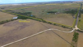 Rural / Farming commercial property for sale at 1/ Hanrattys Road Hunterston VIC 3971