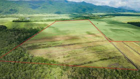 Rural / Farming commercial property for sale at Lot/2 Mulgrave River Esplanade Aloomba QLD 4871