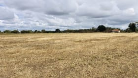 Rural / Farming commercial property for sale at 27 Lower Don Road Bowen QLD 4805