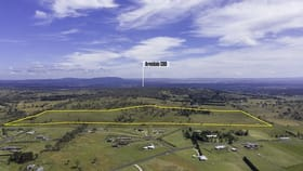 Rural / Farming commercial property for sale at 228 Old Gostwyck Road Armidale NSW 2350