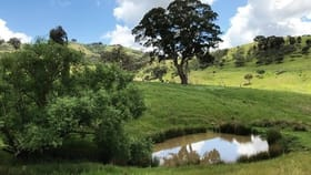 Rural / Farming commercial property for sale at 595 DRY CREEK ROAD Bonnie Doon VIC 3720