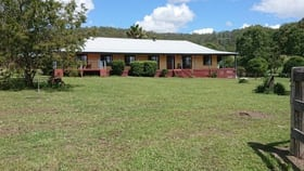 Rural / Farming commercial property for sale at 2548 Wallanbah Road Firefly NSW 2429