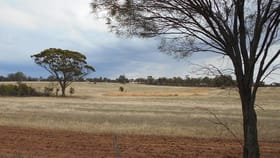 Rural / Farming commercial property for sale at 987 Warren Rd Coblinine WA 6317