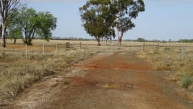 Rural / Farming commercial property for sale at 764 MCKENZIE ROAD Echuca VIC 3564