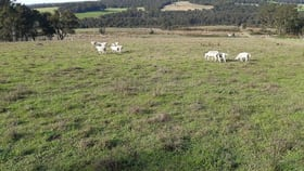Rural / Farming commercial property for sale at Lot 15 Gardiner Road North Walpole WA 6398