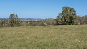 Rural / Farming commercial property for sale at Lot 2/ Forest Plain Road Allora QLD 4362