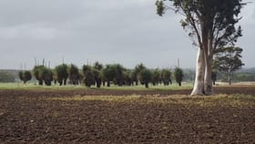 Rural / Farming commercial property for sale at Lot 802/ Westdale Road Beverley WA 6304